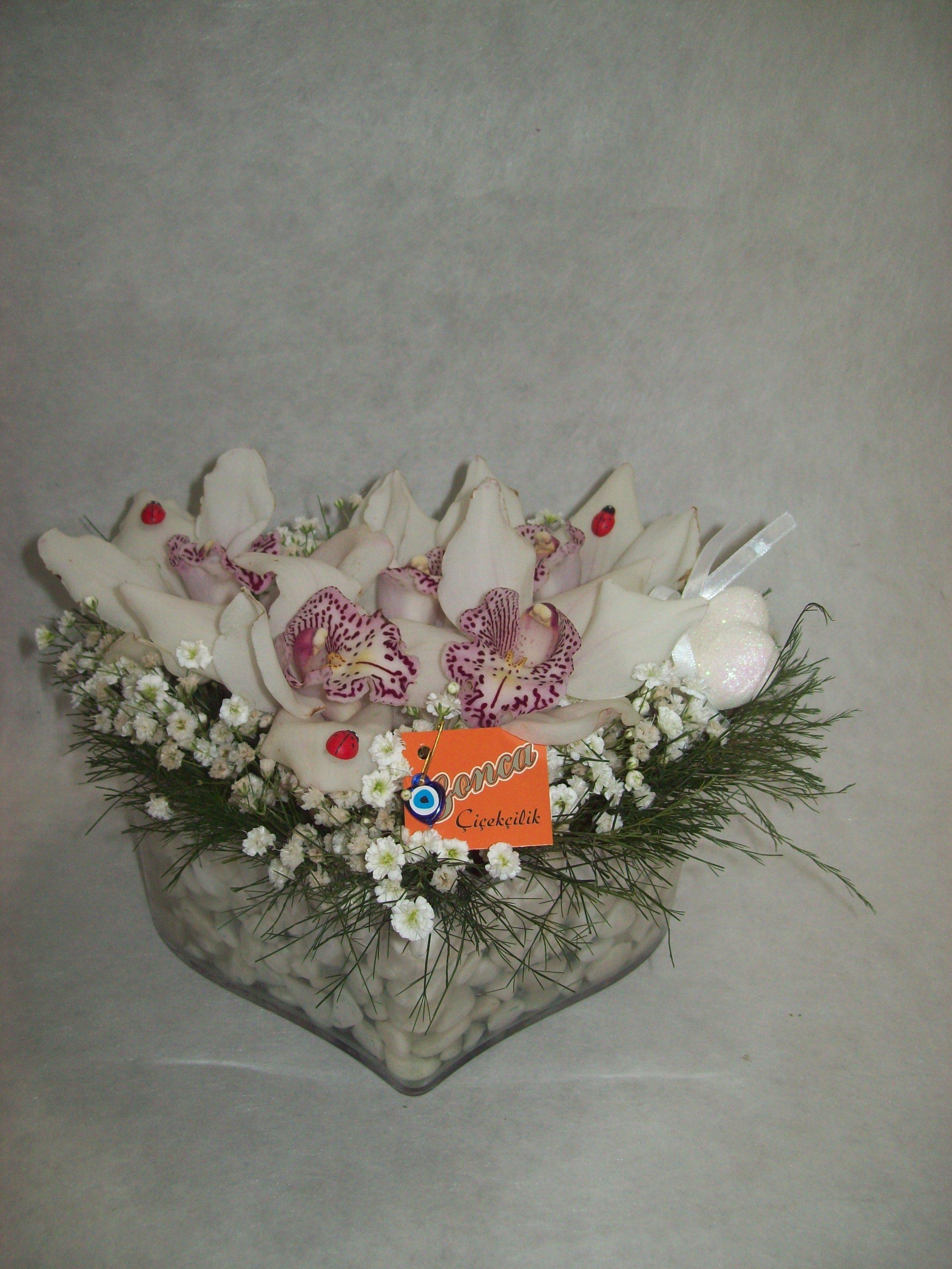 Kalp İçinde Orkide Tanzimi