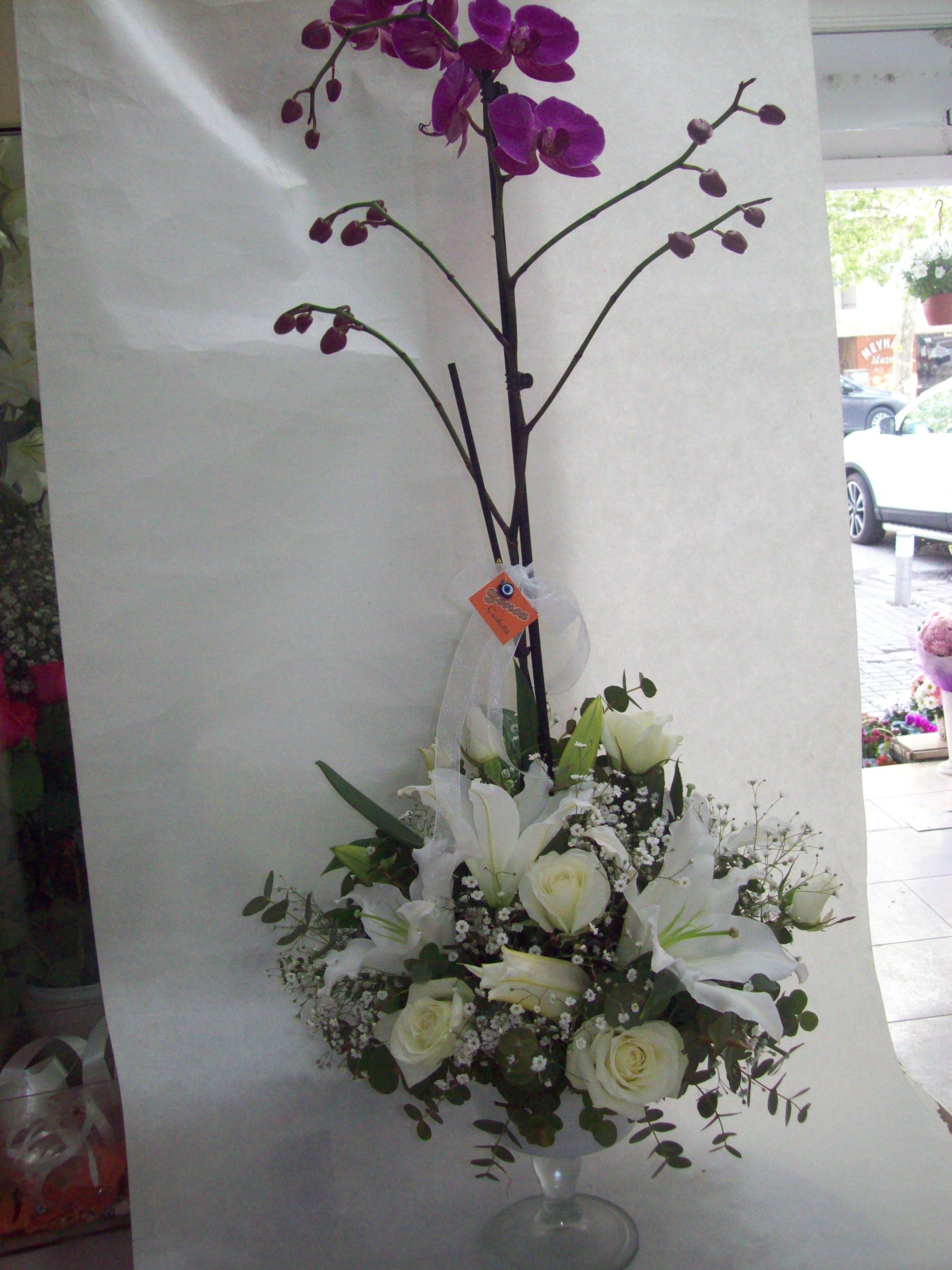 Cam Kadehte Orkide Tanzimi